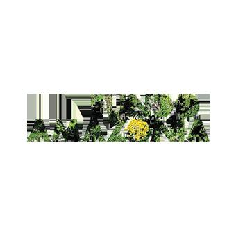 Fundo-Amazonia2